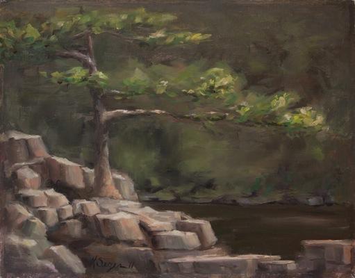 Taylors Falls Tree