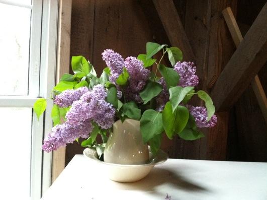 lilacs.setup